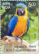 Commemorative Stamp on Blue Throated Macaw