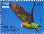 Commemorative Stamp on Cape Parrot