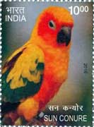 Commemorative Stamp on Sun Conure