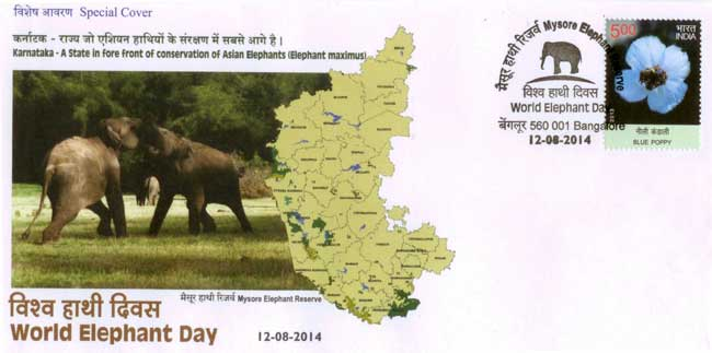 World Elephant Day Special Cover
