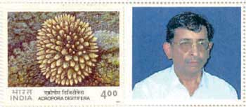 Personalised Stamps of India