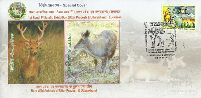 Special Cover on Swamp Deer and Musk Dear