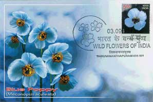 Wild Flowers of India Maxim Cards