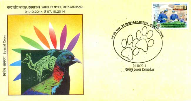 Special Cover on Wildlife Week at Dehradun