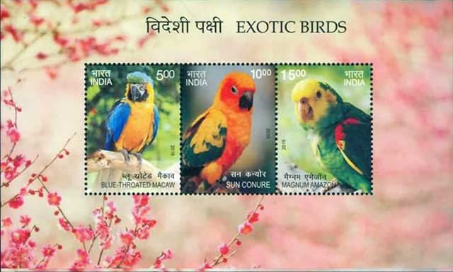 Miniature Sheet on Exotic Birds