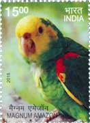 Commemorative Stamp on Magnum Amazon