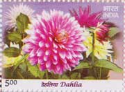 Flowers - Dahlia My Stamp Sheetlet